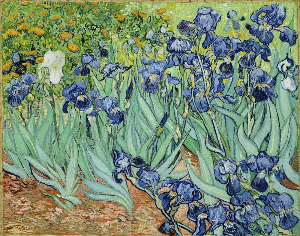 Van-Gogh-Irises-ss